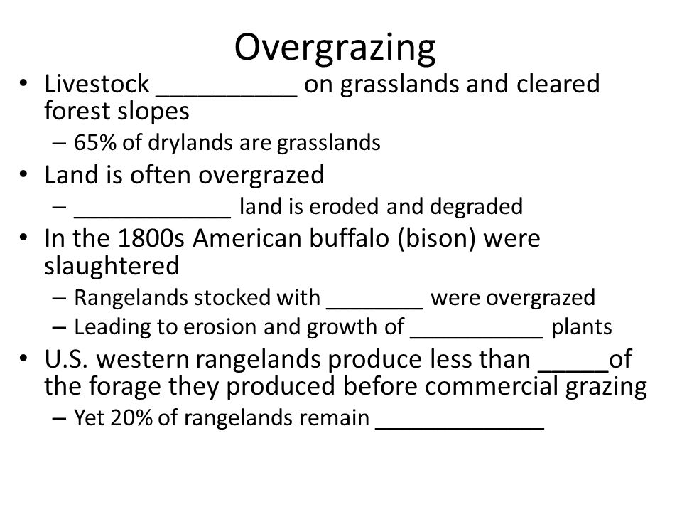 american rangelands and forests essay Associate level material american rangelands and forests part 1 choose either a rangeland or a forest of the united states and describe current federal management strategies explain federal efforts to manage these lands sustainably by completing the chart below.