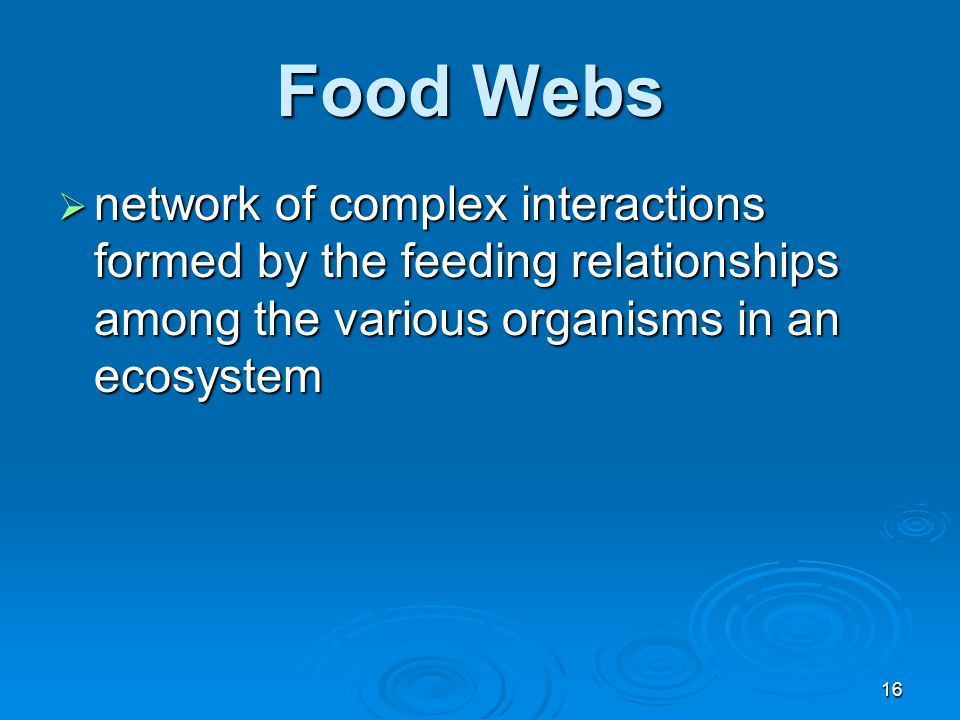 Food Webs network of complex interactions formed by the feeding relationships among the various organisms in an ecosystem.