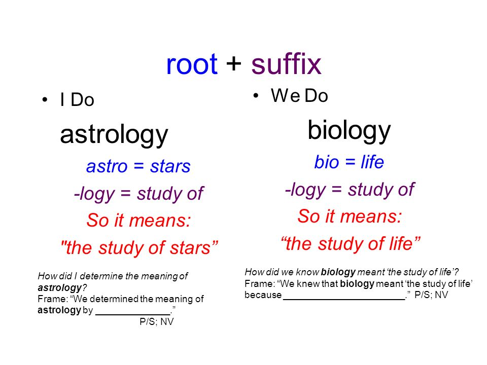 Root word meaning study of