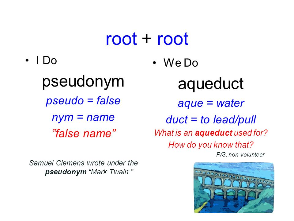Name Root: Greek & Latin Root Words Word Analysis & Vocabulary Ppt