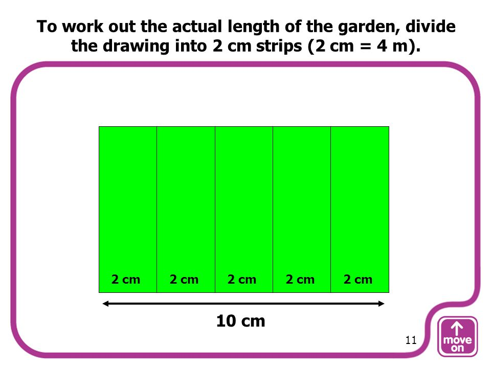 To work out the actual length of the garden, divide the drawing into 2 cm strips (2 cm = 4 m).