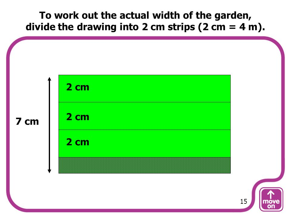 To work out the actual width of the garden, divide the drawing into 2 cm strips (2 cm = 4 m).