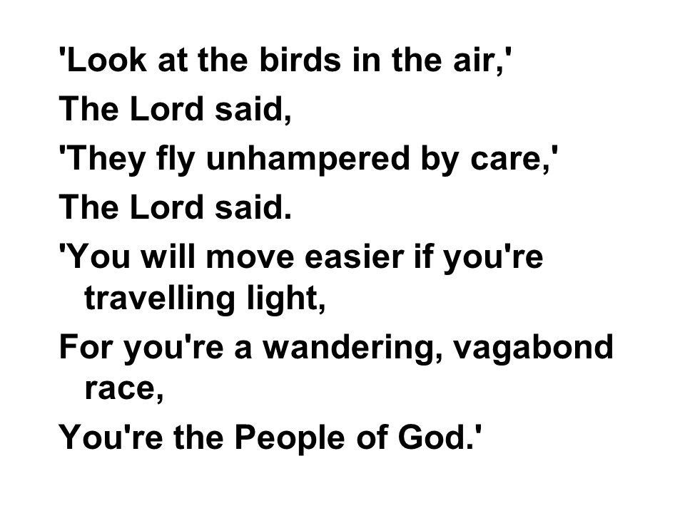 Look at the birds in the air,