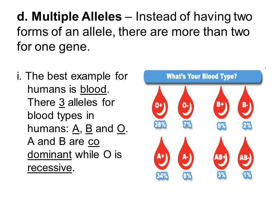 what is the significance of multiple alleles