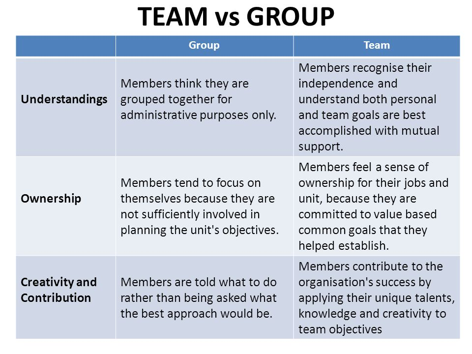 TEAM vs GROUP Understandings