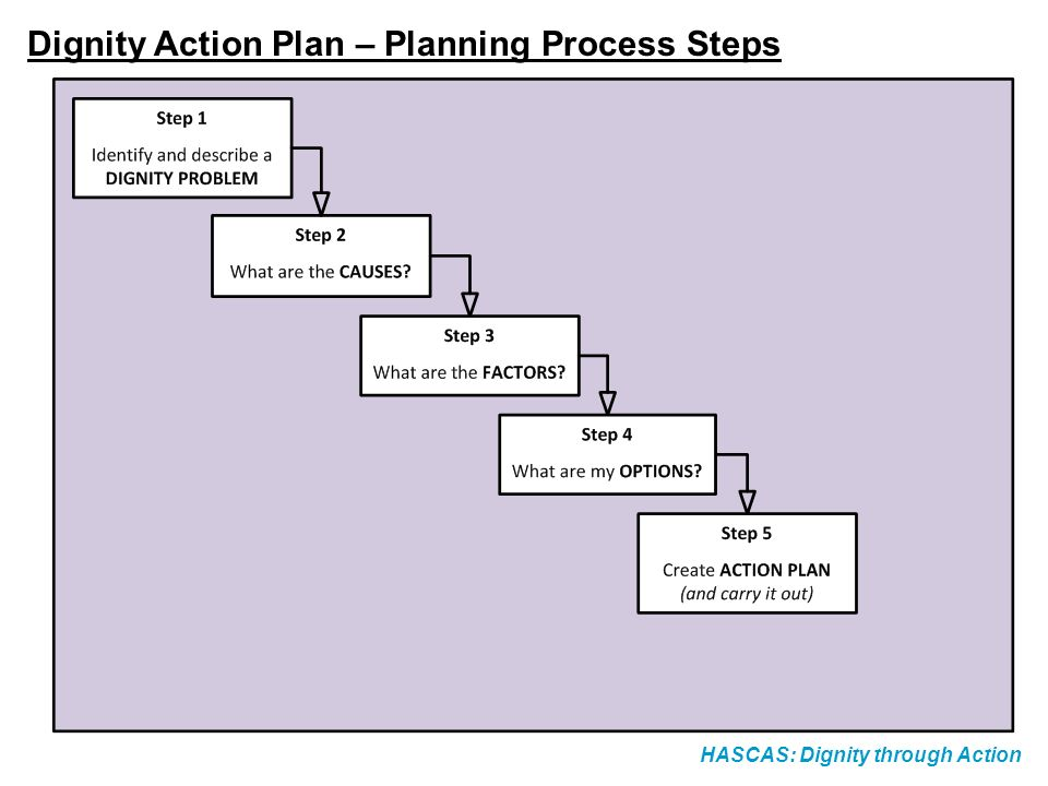 Dignity Action Plan – Planning Process Steps