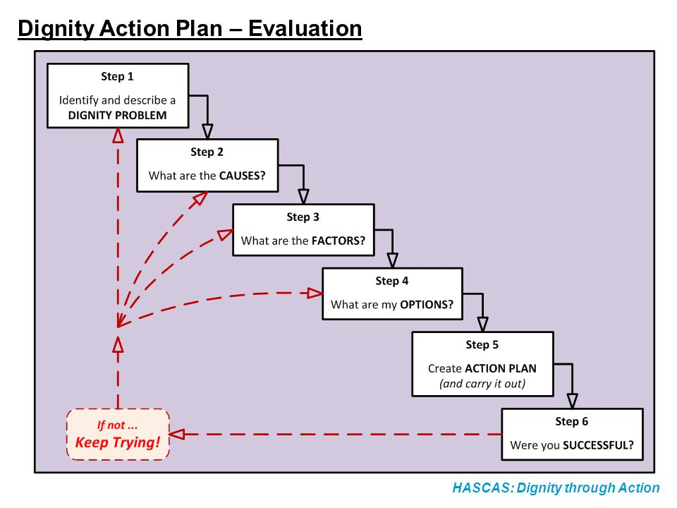 Dignity Action Plan – Evaluation