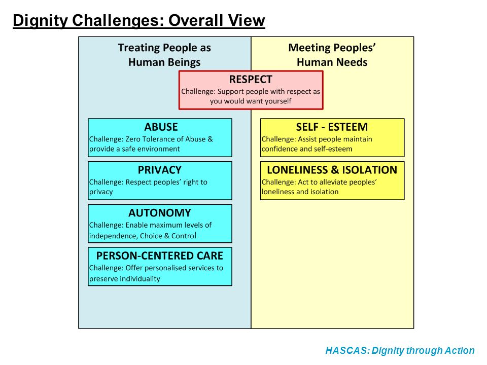 Dignity Challenges: Overall View