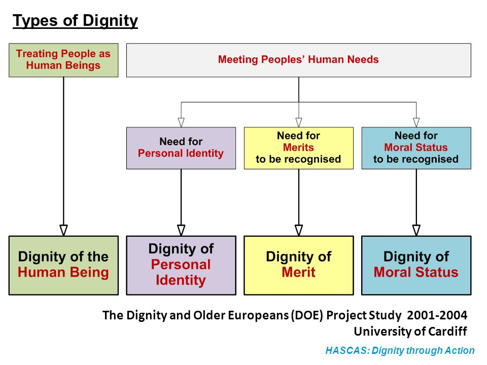 Types of Dignity The Dignity and Older Europeans (DOE) Project Study 2001-2004. University of Cardiff.