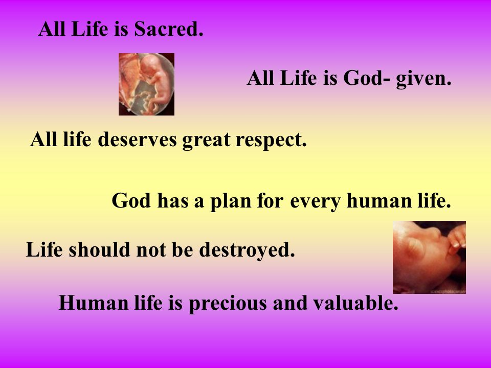 All Life is Sacred. All Life is God- given. All life deserves great respect. God has a plan for every human life.