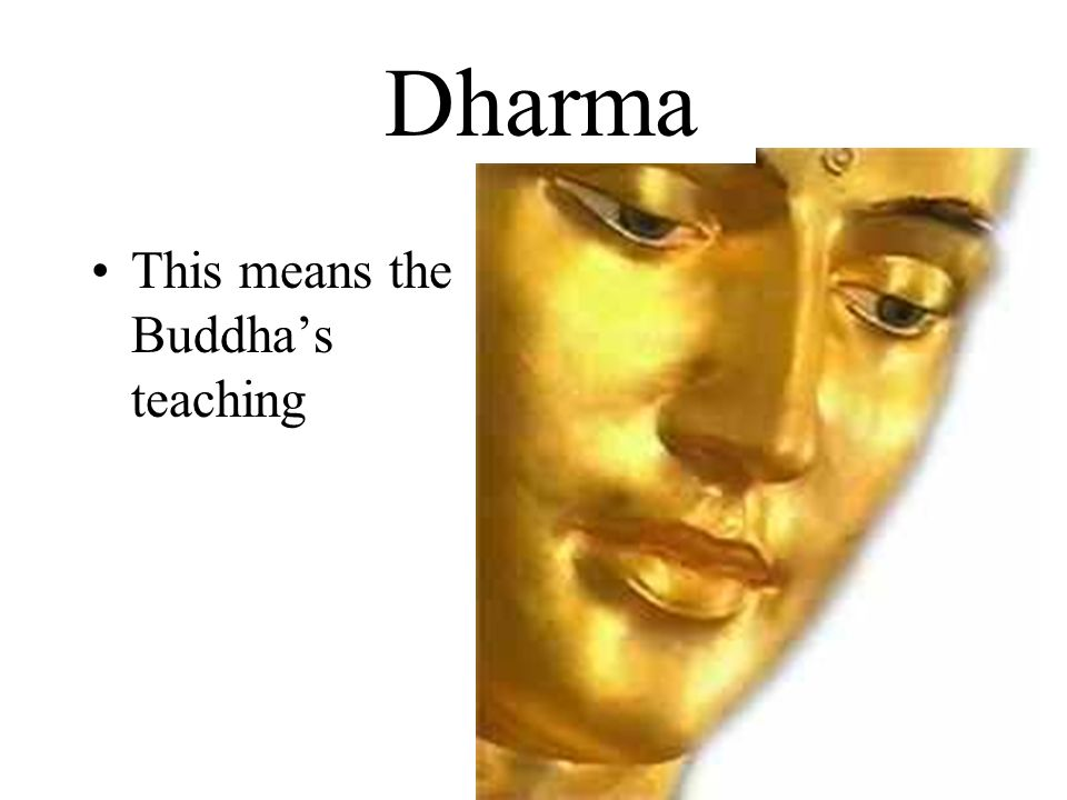Dharma Dharma This means the Buddha's teaching