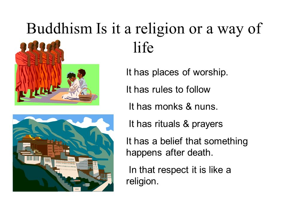 Buddhism Is it a religion or a way of life