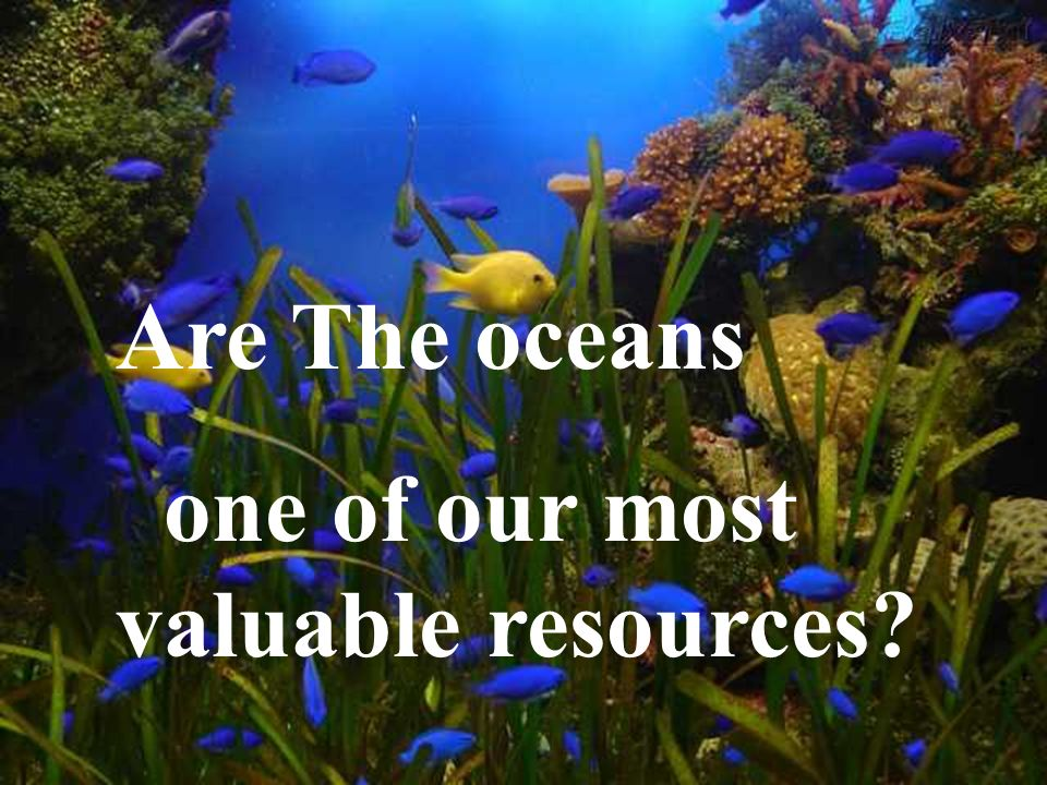 Are The oceans one of our most valuable resources