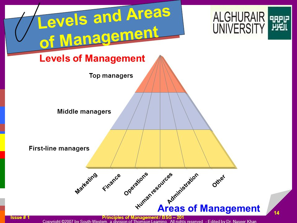 Levels and Areas of Management