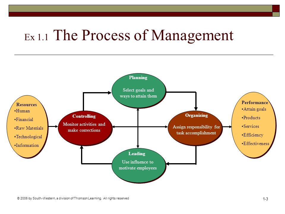 Ex 1.1 The Process of Management