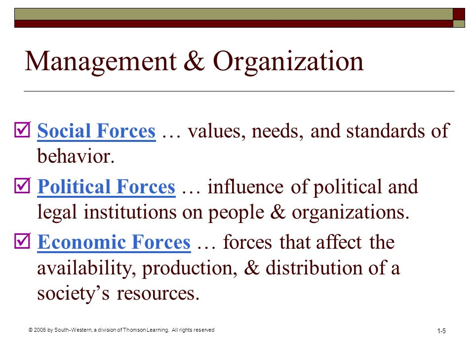 Management & Organization
