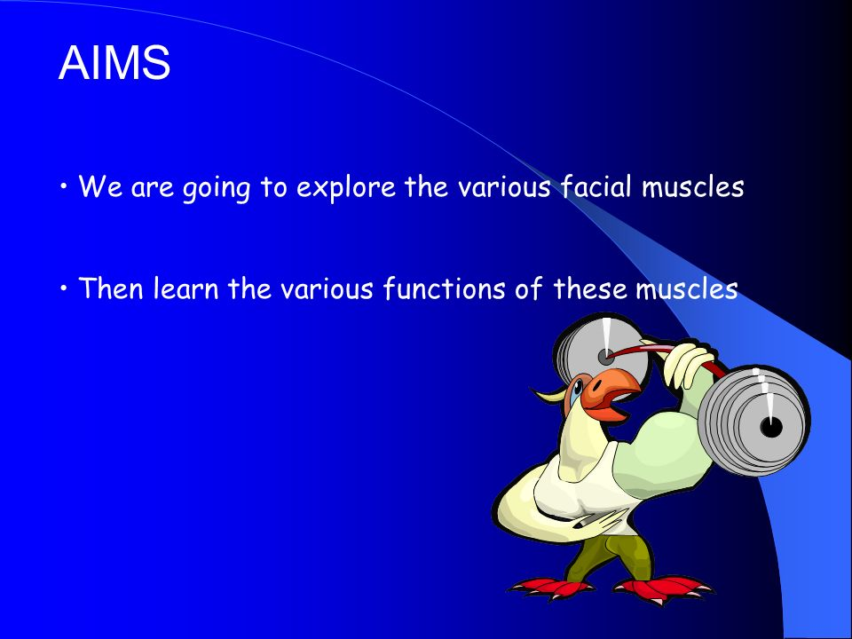 AIMS We are going to explore the various facial muscles