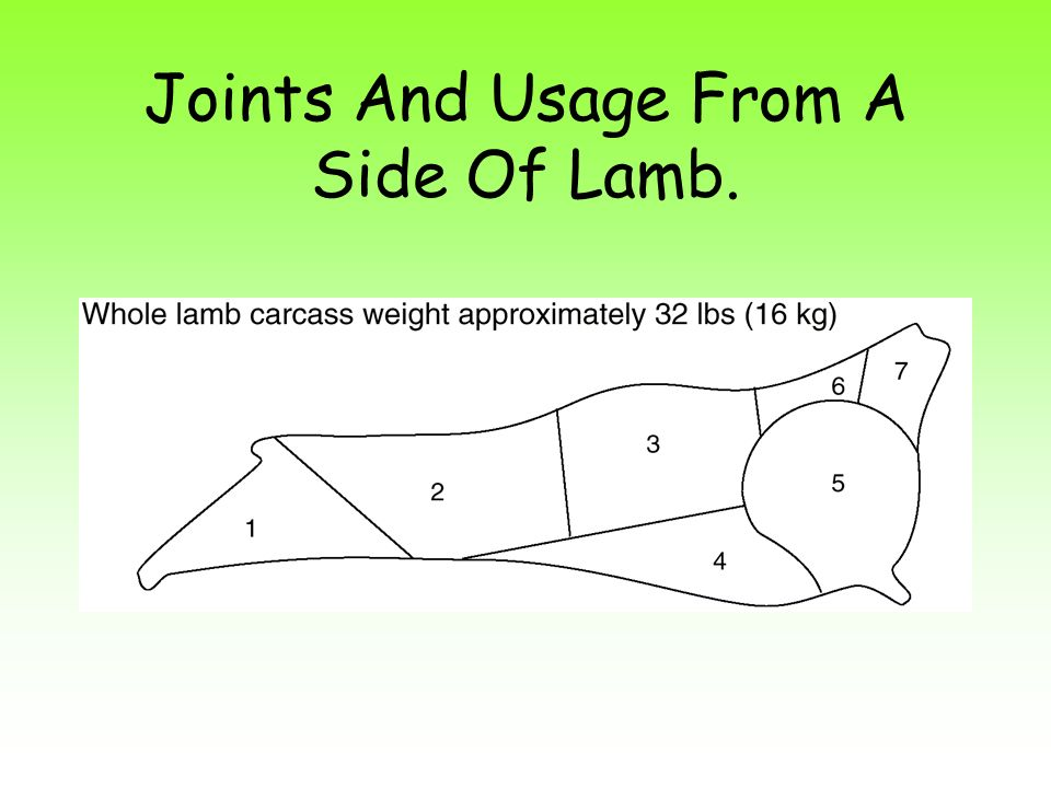 Joints And Usage From A Side Of Lamb.