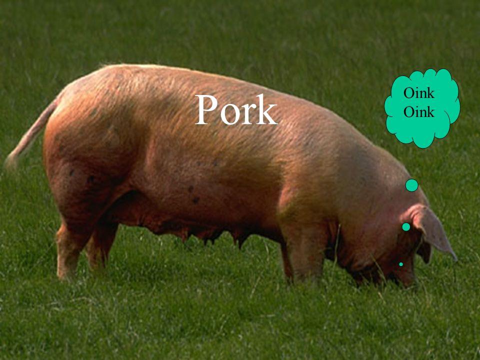 Pork Oink Oink