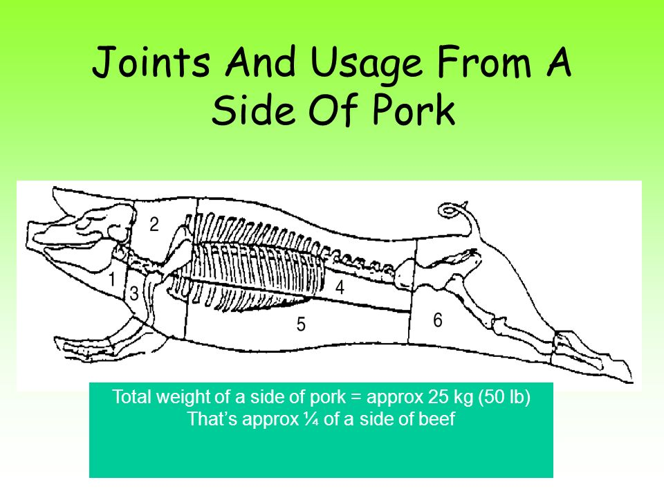 Joints And Usage From A Side Of Pork