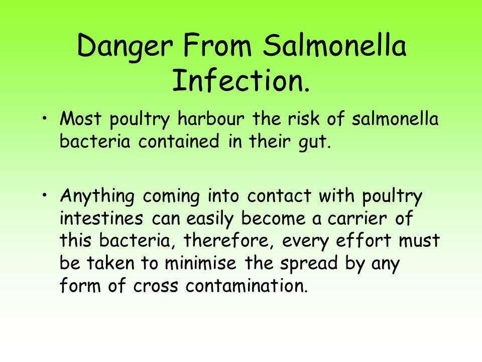 Danger From Salmonella Infection.