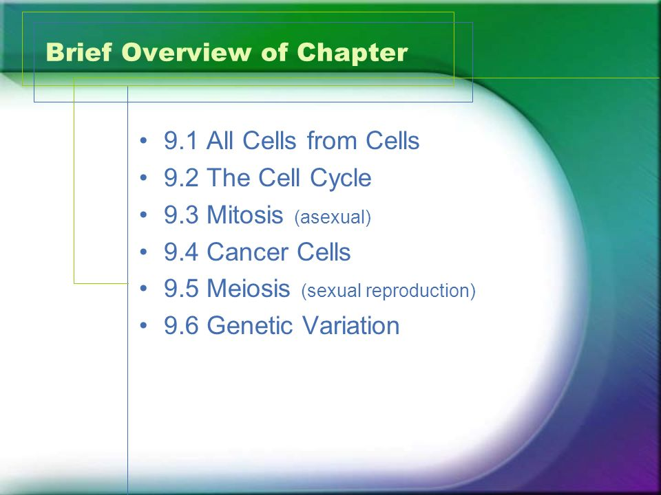 chapter 8 the cellular basis of Chapter 8 the cellular basis of reproduction and inheritance cancer cells – start out as normal body cells, – undergo genetic mutations, .