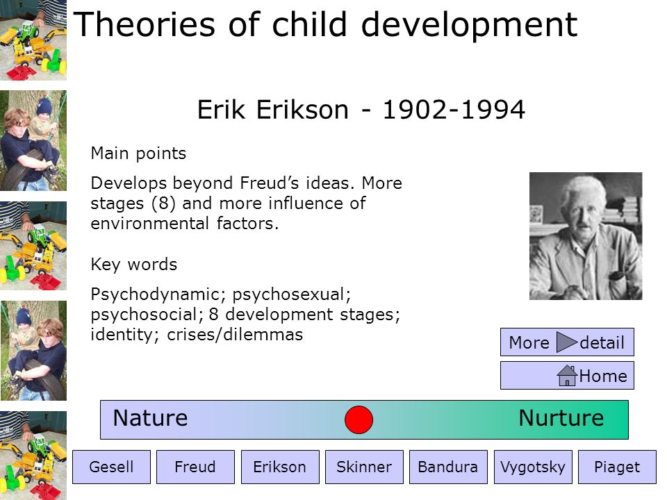Erik Erikson - 1902-1994 Nature Nurture Main points