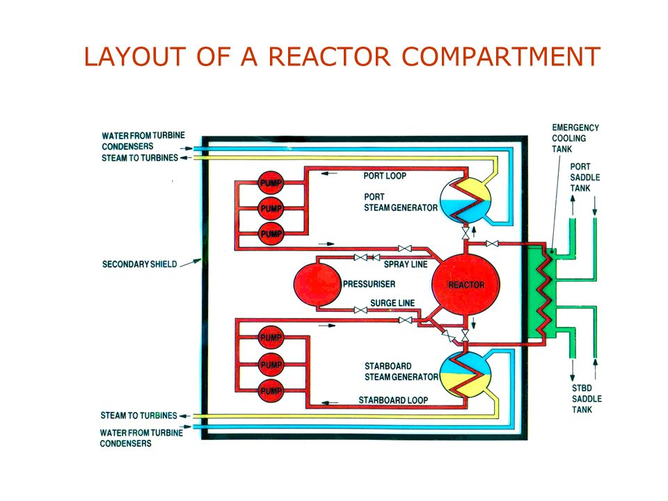 LAYOUT OF A REACTOR COMPARTMENT