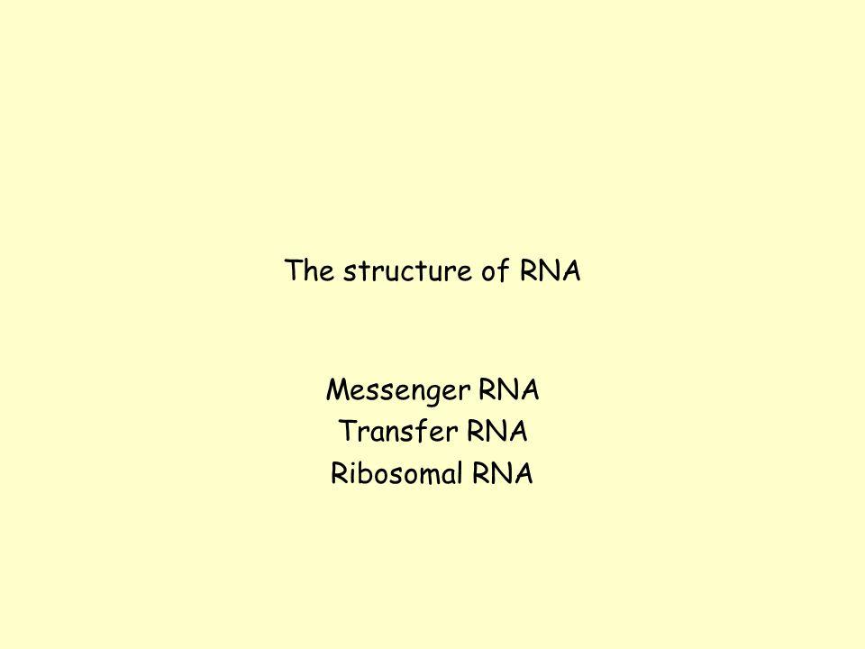 Messenger RNA Transfer RNA Ribosomal RNA