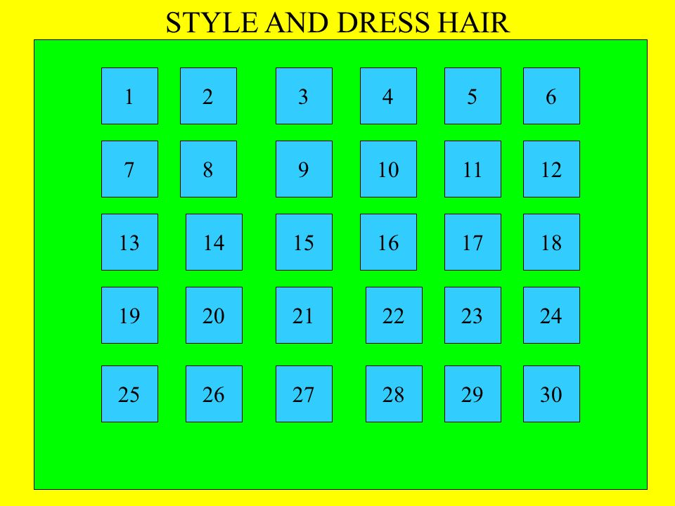 STYLE AND DRESS HAIR 1. 2. 3. 4. 5. 6. 7. 8. 9. 10. 11. 12. 13. 14. 15. 16. 17. 18.
