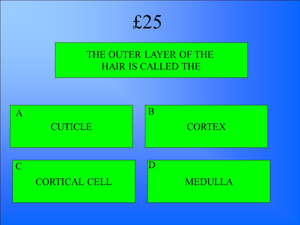 £25 THE OUTER LAYER OF THE HAIR IS CALLED THE CUTICLE A B CORTEX C D