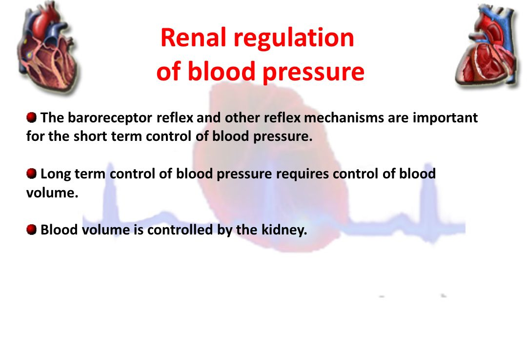 Cardiovascular Block Arterial Blood Pressure & Its ...