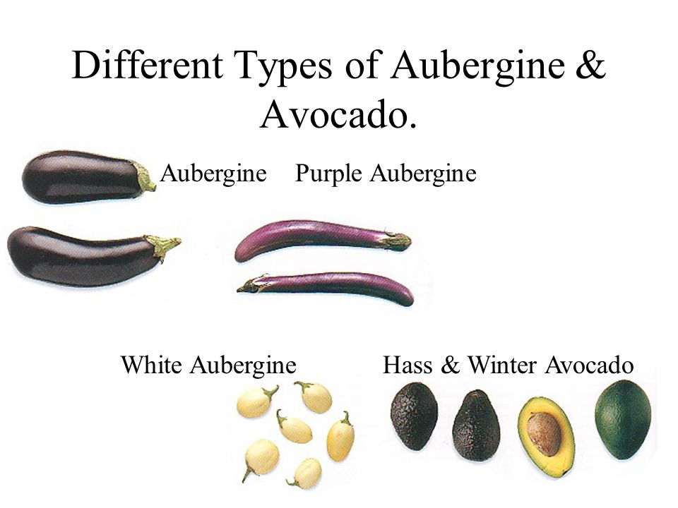 Different Types of Aubergine & Avocado.