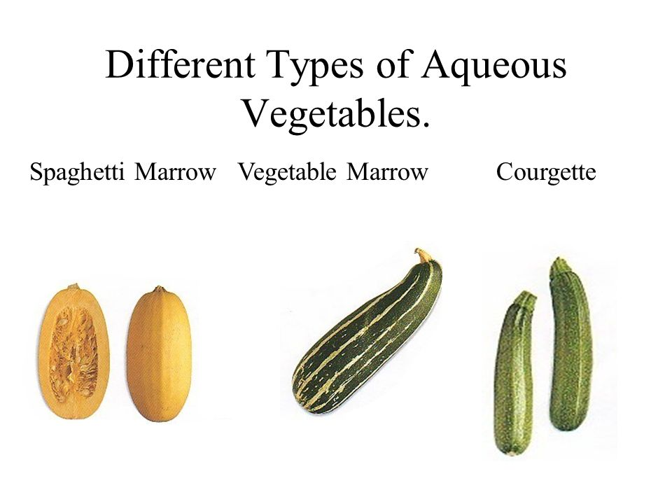 Different Types of Aqueous Vegetables.