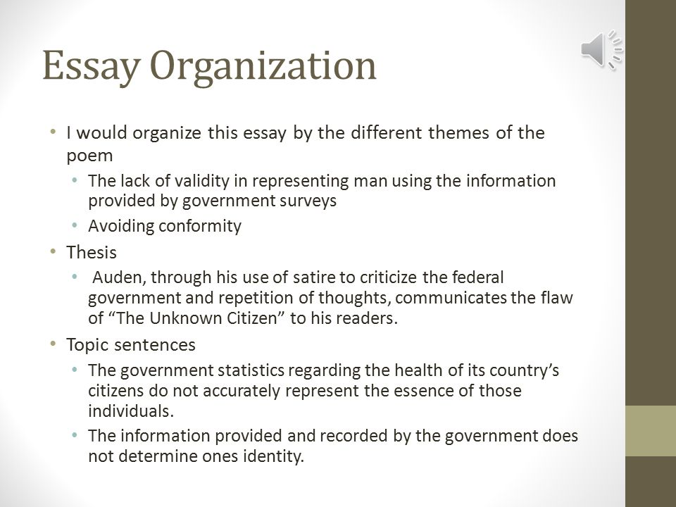 Unknown Citizen Essay The Unknown Citizen