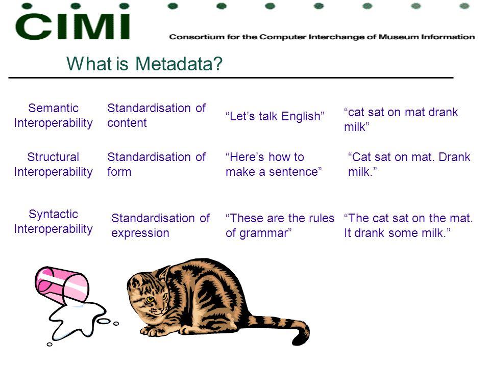 What is Metadata Semantic Interoperability Standardisation of content