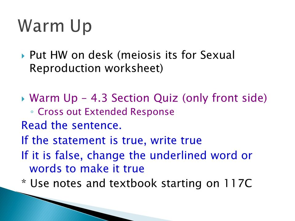 Warm Up – put mitosis poster on desk - ppt download