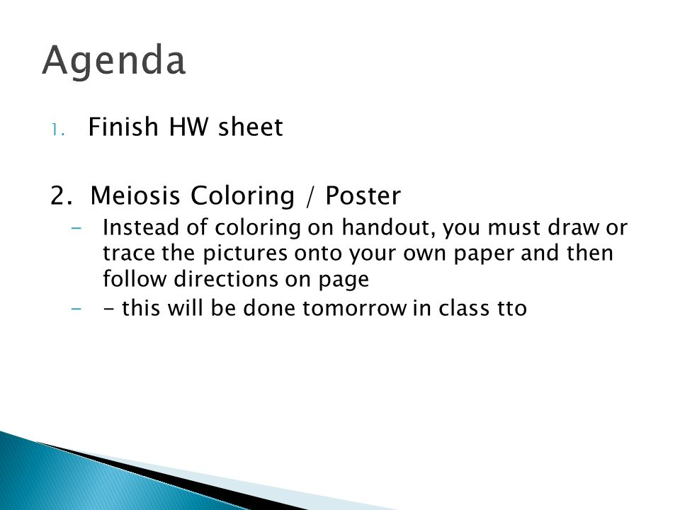 Warm Up put mitosis poster on desk ppt download – Meiosis Coloring Worksheet