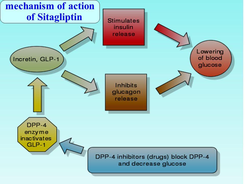 Oral hypoglycemic drugs - ppt download