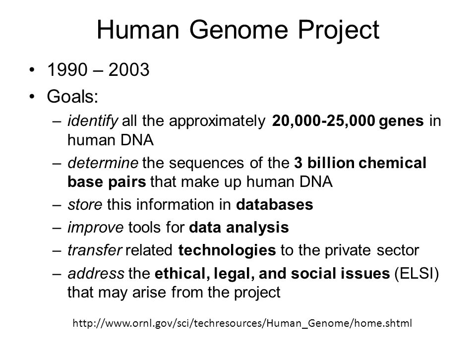 The Human Genome Project: A Scientific and Ethical Overview