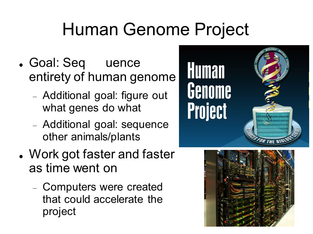 goal of human genome project The goal of the human genome project was considered wildly ambitious at the time: first, to sequence the entire human genetic code, which had never before been done and seemed like an overwhelming.