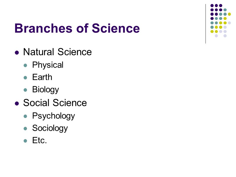 Branches of Science Natural Science Social Science Physical Earth
