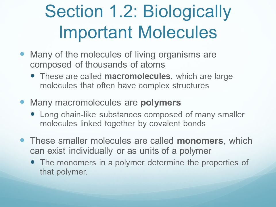 biologically important molecules Biologically important molecules ( use with printout from zerobio website) note: images from internet and used for educational purposes only.
