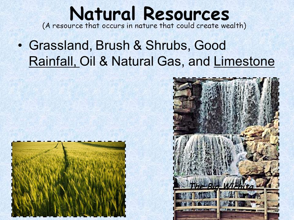 Natural Resources (A resource that occurs in nature that could create wealth)