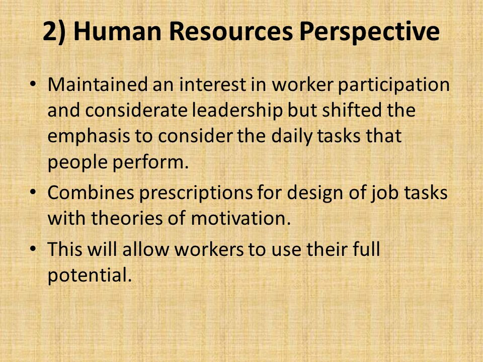2) Human Resources Perspective