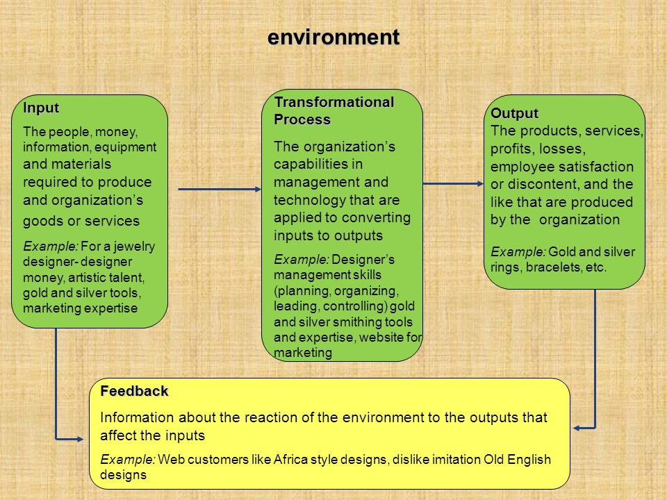 environment Transformational Process Input Output