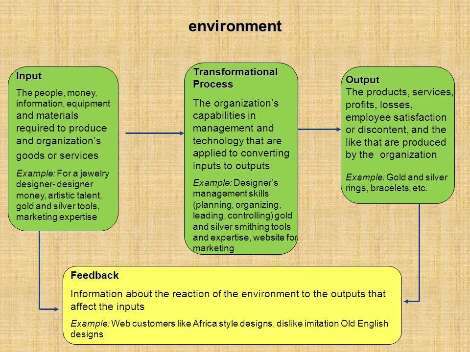 environment Transformational Process Input Output