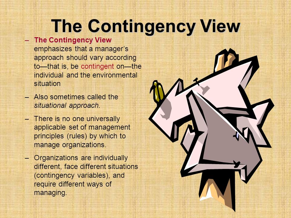 The Contingency View