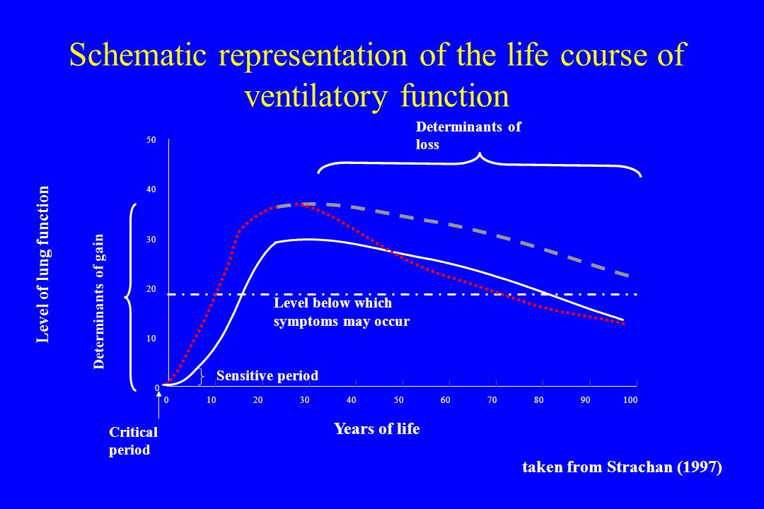 Schematic representation of the life course of ventilatory function