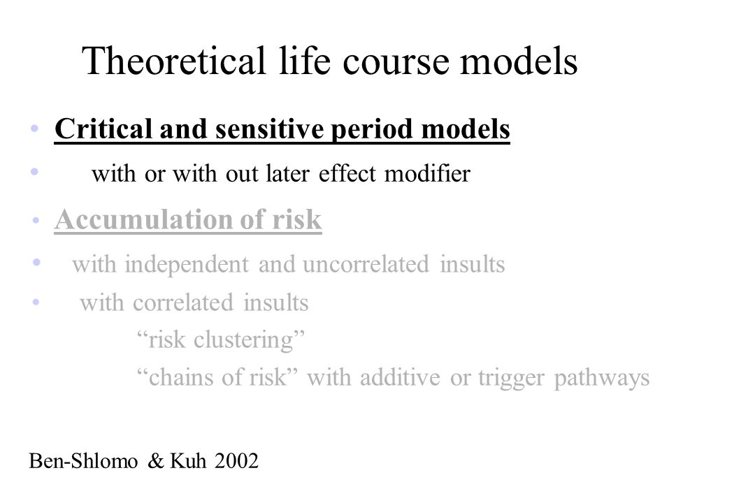 Theoretical life course models